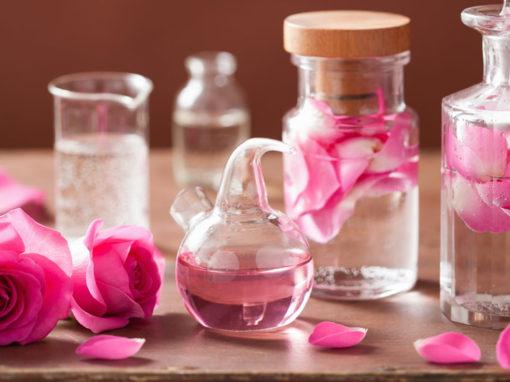 Alchemie: Von der Pflanze zur Transformation