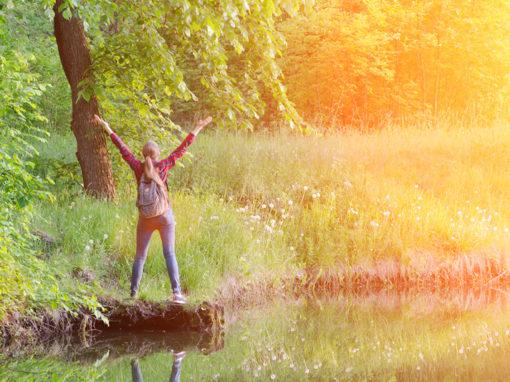 Psycho-Aromatherapie praktisch 2