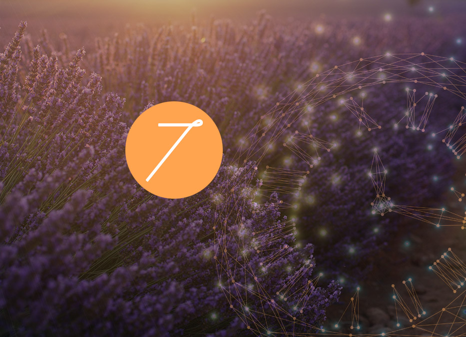 7. Raunacht: Lavandin – Guter Duft / Böser Duft