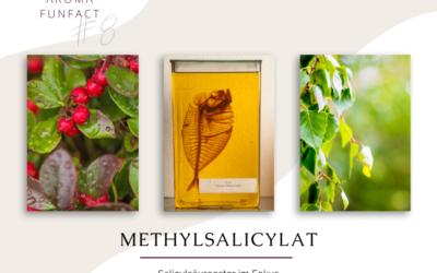 Aroma Funfact #8 – Methylsalicylat im Fokus