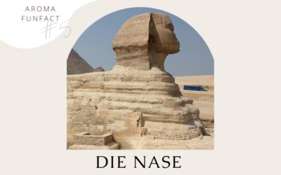 Aroma Funfact #5: Die Nase im Alten Ägypten