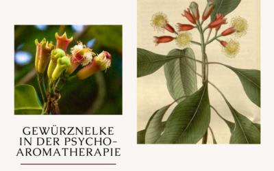 Gewürznelke in der Psycho-Aromatherapie
